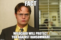 How Wildcard Protects Clients from Ransomware