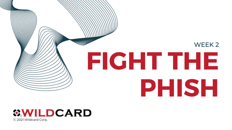 CSAM 2021: Fight the Phish